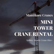 Mini Tower Crane Rental
